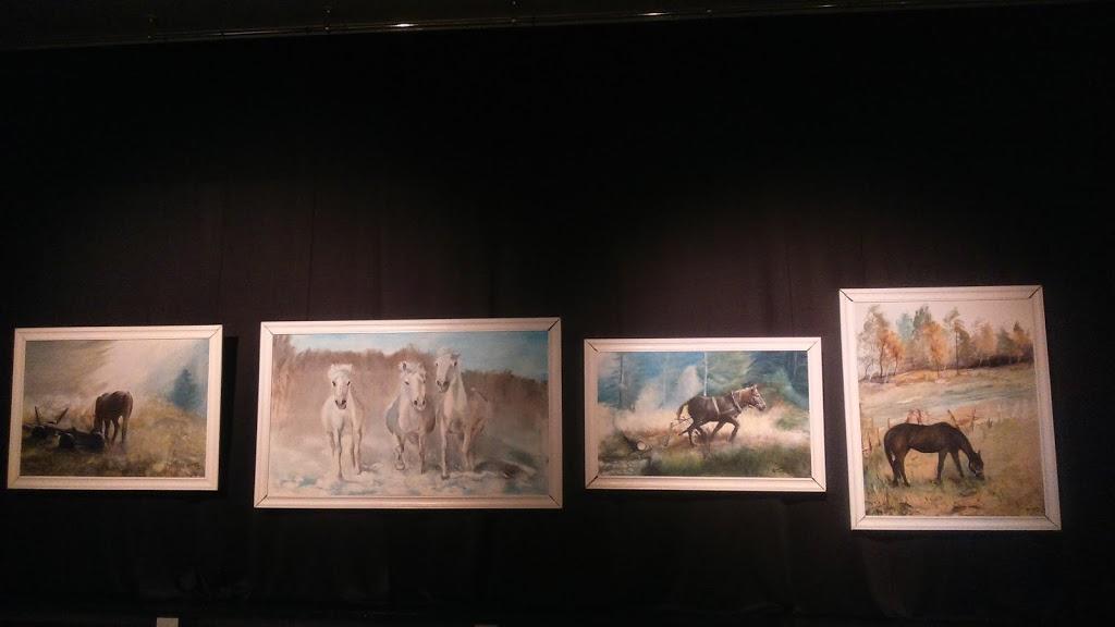 2017 02 oswiecim wystawa (1)